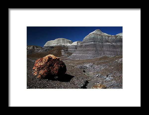 Landscape Framed Print featuring the photograph Petrified Wood by Scott Cunningham