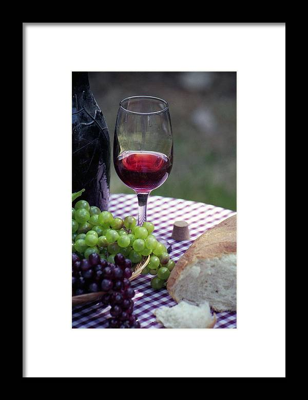Picnic Framed Print featuring the photograph Picnic In The Park by Pamela Critchlow