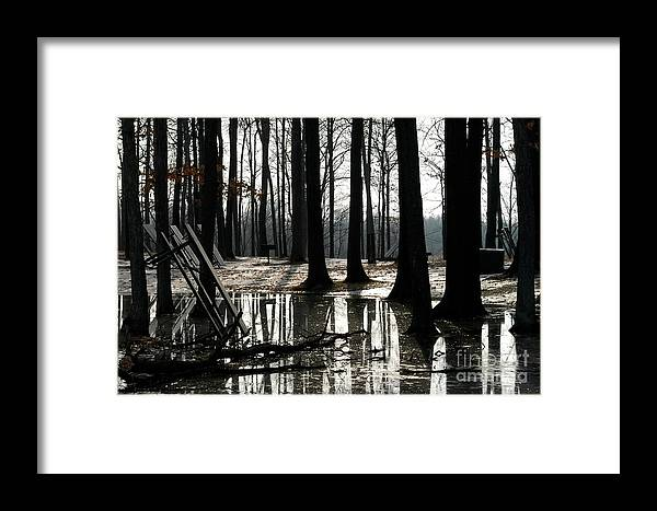 Ice Framed Print featuring the photograph Picnic Silver by Joseph Yarbrough
