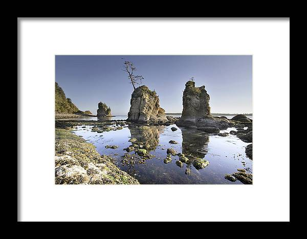 Pig Framed Print featuring the photograph Pig And Sows Inlet In Garibaldi Oregon At Low Tide by Jit Lim