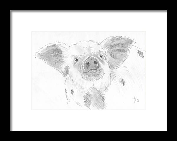 Pig Framed Print featuring the drawing Piglet  by Mike Jory