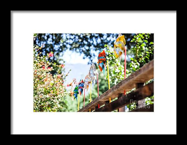 Framed Print featuring the photograph Pin Wheels by Joe Galura