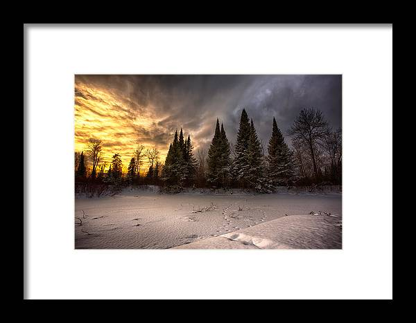 Bitter Framed Print featuring the photograph Pinewood River by Jakub Sisak