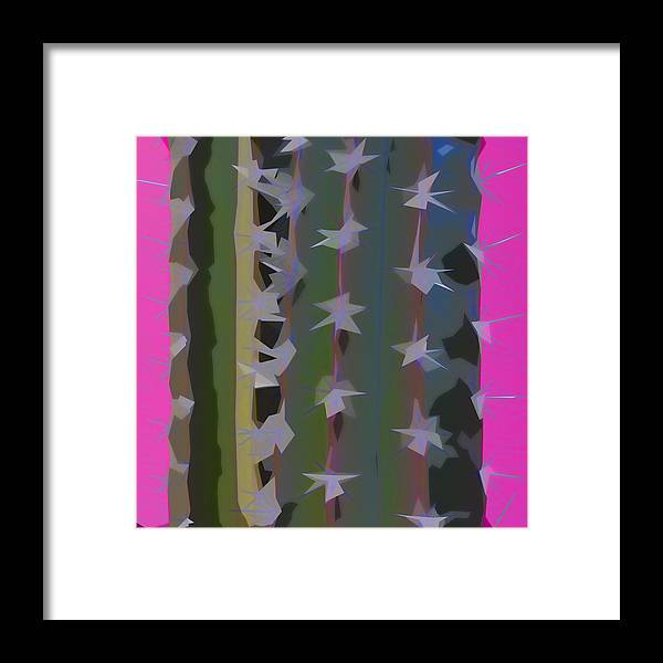 Cactus Framed Print featuring the photograph Pink And Green Cactus Collage by Carol Leigh