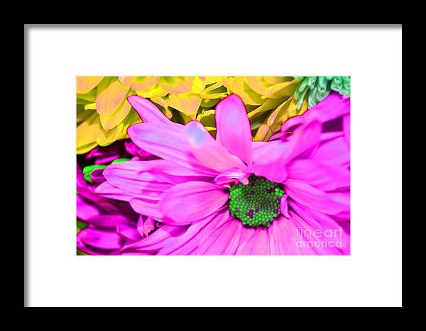 Pink And Green Framed Print featuring the photograph Pink And Green Flowers by LLaura Burge