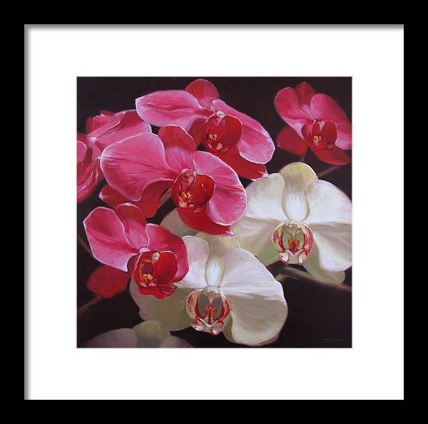 Floral Framed Print featuring the painting Pink And White Orchids by Takayuki Harada
