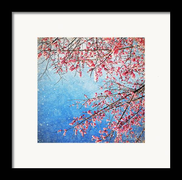 April Framed Print featuring the photograph Pink Blossom by Setsiri Silapasuwanchai