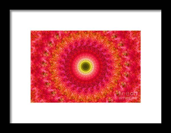 Pink Framed Print featuring the photograph Pink Floral Pattern by Image World