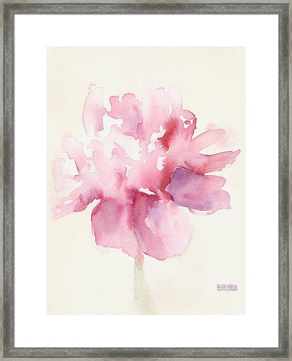Pink Peony Watercolor Paintings Of Flowers Framed Print By