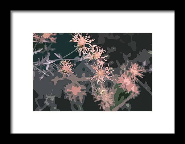 Flowers Framed Print featuring the photograph Pink Thistle Abstract by Nancy Merkle