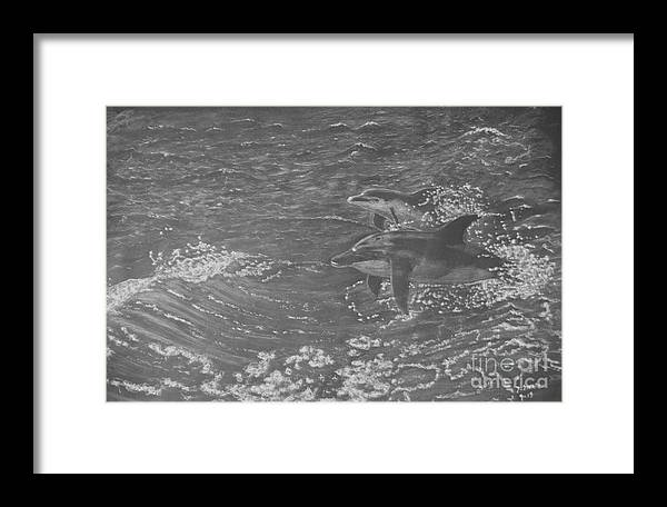 Dolphin Framed Print featuring the drawing Playful Dolphins by David Swope
