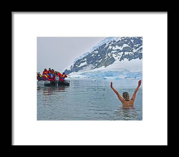 Antarctica Framed Print featuring the photograph Polar Dip by Tony Beck