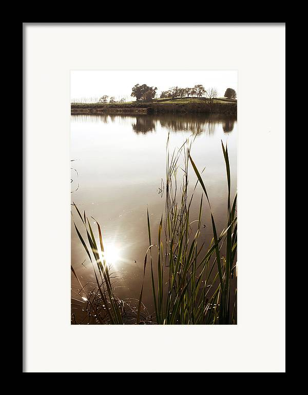 Water Framed Print featuring the photograph Pond by Les Cunliffe