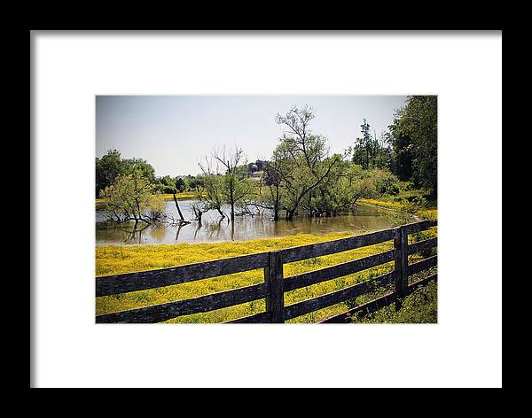 Water Framed Print featuring the photograph Pond by Michael Byerley
