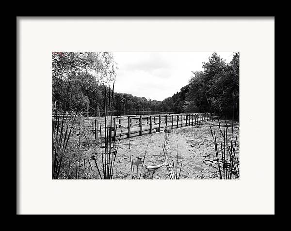 Pond Framed Print featuring the photograph Pond Trail Adventures by Jennifer L Washington