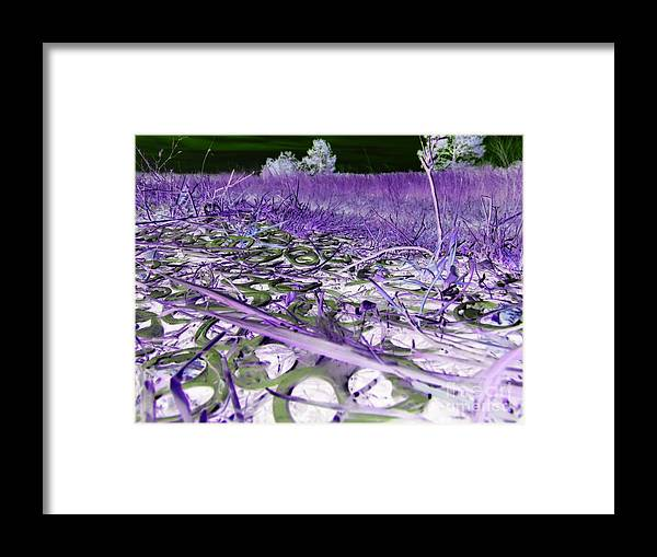 Abstract Framed Print featuring the photograph Pop Art a06 by Rrrose Pix