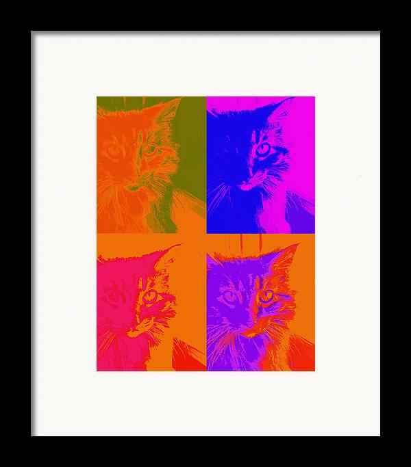 Cat Framed Print featuring the photograph Pop Art Cat by Ann Powell