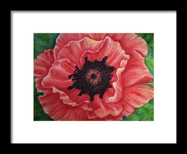 Poppy Framed Print featuring the painting Poppy by Conni Reinecke