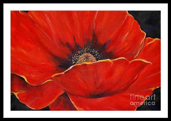 Poppy by Nancy Bradley