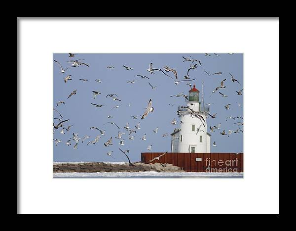 Lighthouse Framed Print featuring the photograph Port Of Cleveland by Debbie Parker