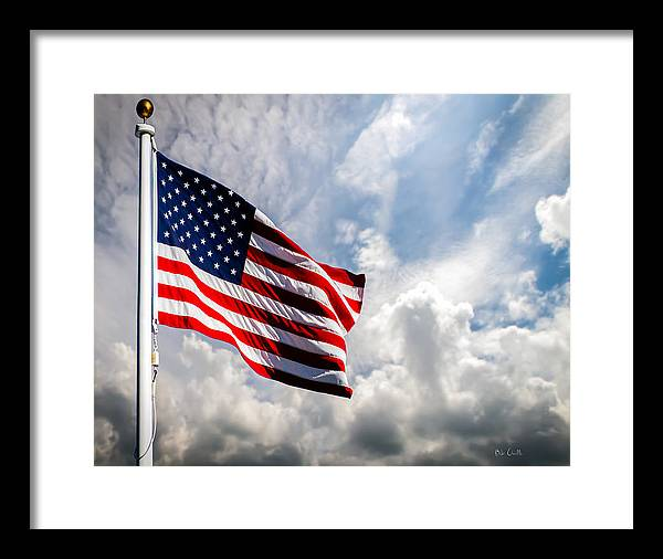 Portrait of The United States of America Flag by Bob Orsillo
