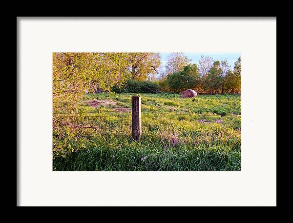 Spring Framed Print featuring the photograph Post And Haybale by Tracy Salava