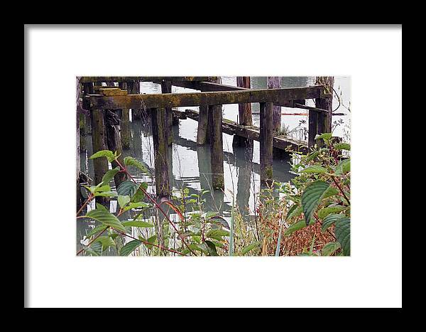 Fishing Framed Print featuring the photograph Posts Reflections by Mark Tsemak