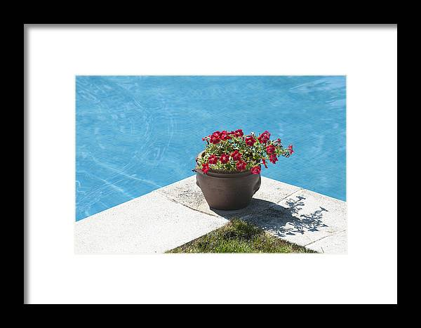 Tranquil Framed Print featuring the photograph Pot In Pool by Oscar Hurtado