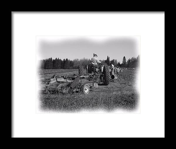 Potato Harvest Framed Print featuring the photograph Potato Harvest 16 by Gene Cyr