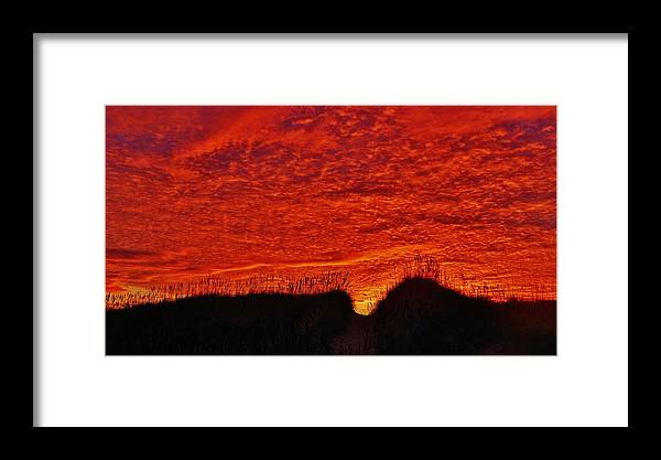 Mark Lemmon Cape Hatteras Nc The Outer Banks Photographer Subjects From Sunrise Framed Print featuring the photograph Predawn Dune Color Explosion 5 10/30 by Mark Lemmon