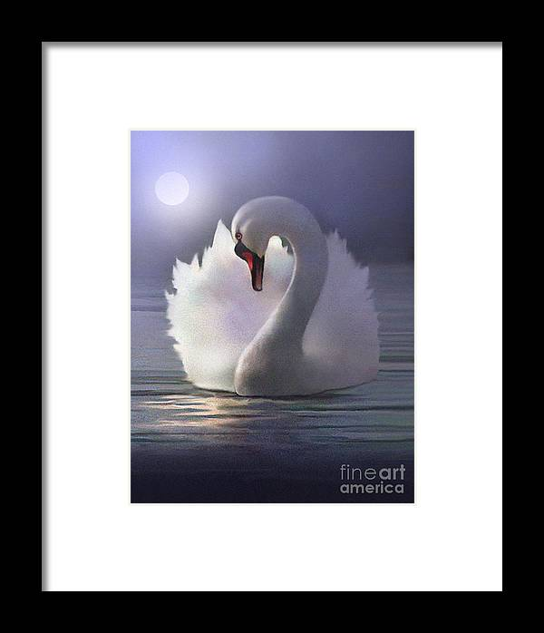 Swan Framed Print featuring the painting Preen by Robert Foster