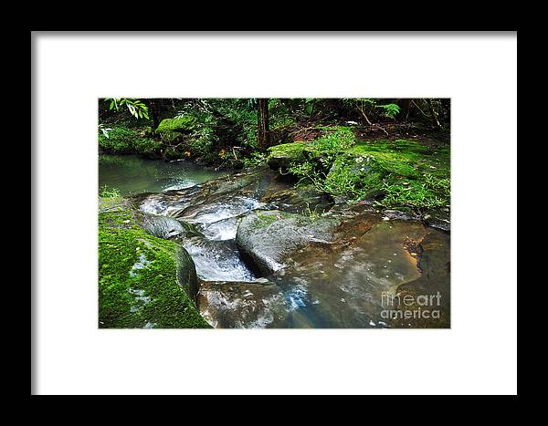 Photography Framed Print featuring the photograph Pretty Green Creek by Kaye Menner