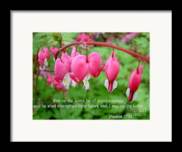 Flowers Framed Print featuring the photograph Psalms 27 14 Bleeding Hearts by Sara Raber