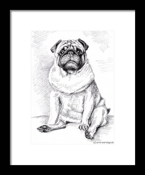 Dog Framed Print featuring the drawing Pug Anton by Nicole Zeug