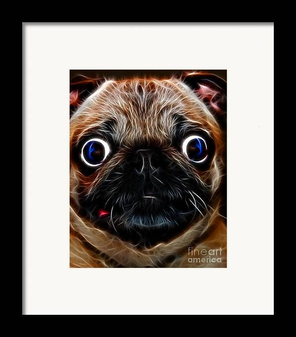 Animal Framed Print featuring the photograph Pug Dog - Electric by Wingsdomain Art and Photography