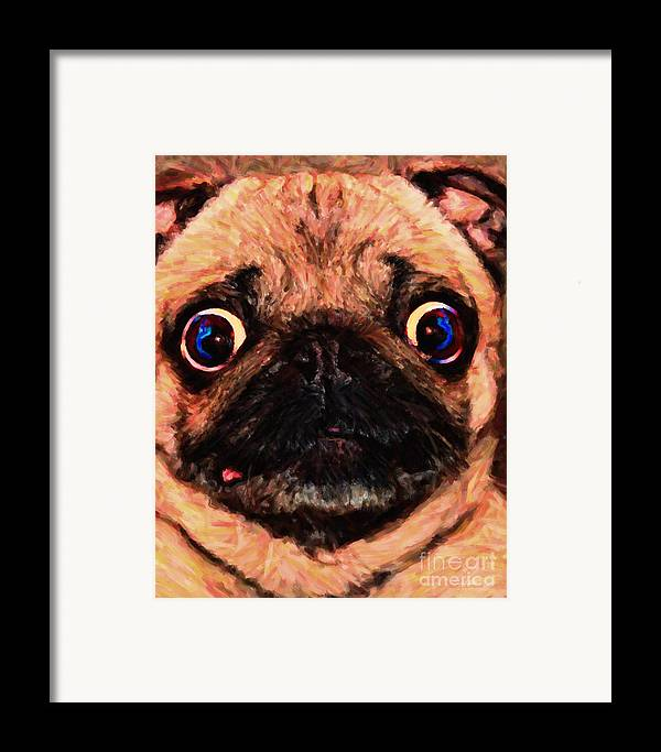 Animal Framed Print featuring the photograph Pug Dog - Painterly by Wingsdomain Art and Photography