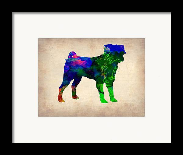 Pug Framed Print featuring the painting Pug Watercolor by Naxart Studio