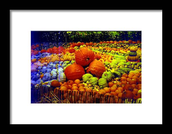 Pumpkins Framed Print featuring the photograph Pumpkin Love by Seaon Ducote