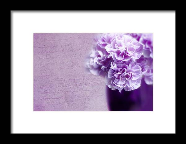 Real Framed Print featuring the photograph Purple Carnations by Rebecca Cozart