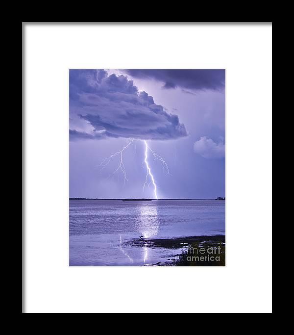 Florida Framed Print featuring the photograph Purple Haze by Stephen Whalen