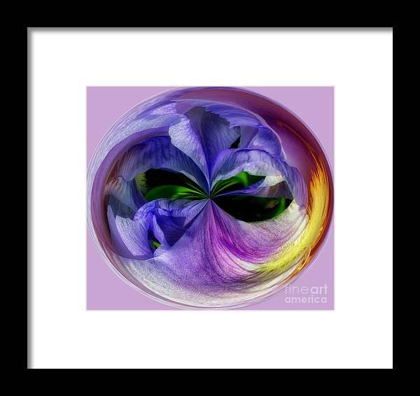 Purple Framed Print featuring the photograph Purple Iris Orb by Scott Hervieux