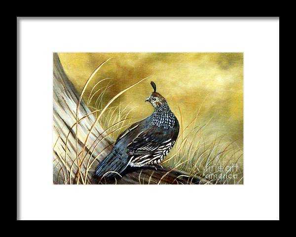Quail Sunning Framed Print featuring the painting Quail on log by Lynne Parker