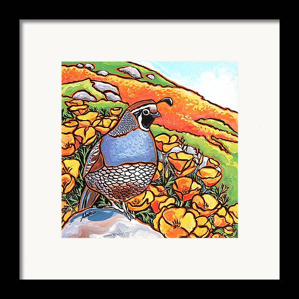 California Poppies Framed Print featuring the painting Quail Poppies by Nadi Spencer
