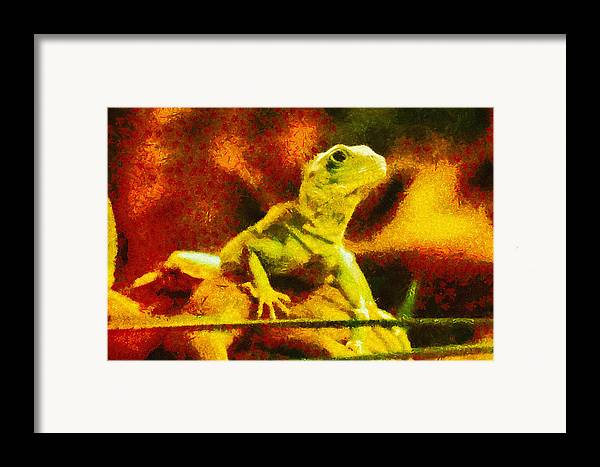 Lizard Framed Print featuring the painting Queen Of The Reptiles by Ayse Deniz