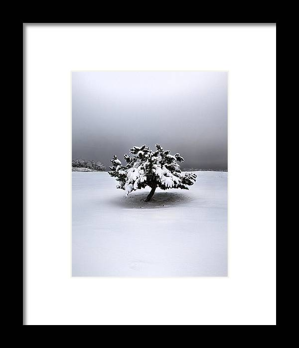 Snow Framed Print featuring the photograph Quite Simply by Phil Koch