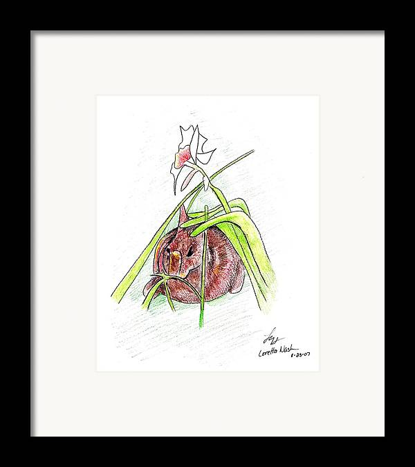 Rabbit Framed Print featuring the drawing Rabbit by Loretta Nash