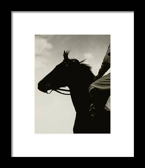 Animal Framed Print featuring the photograph Race Horse Gallant Fox by Edward Steichen