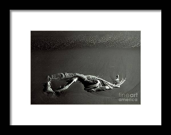Rag Framed Print featuring the photograph Rag by Candido Salghero