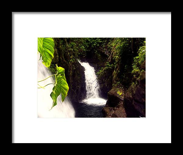 La Paz Framed Print featuring the photograph Rain Forest Grotto With 2 Waterfalls by Michael Kogan