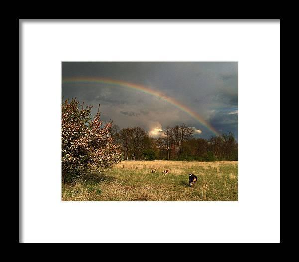 Rainbow Framed Print featuring the photograph Rainbow by Jane Galik